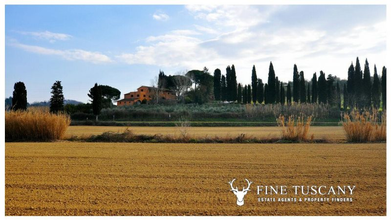 Farmhouse for sale in Crespina Tuscany Italy