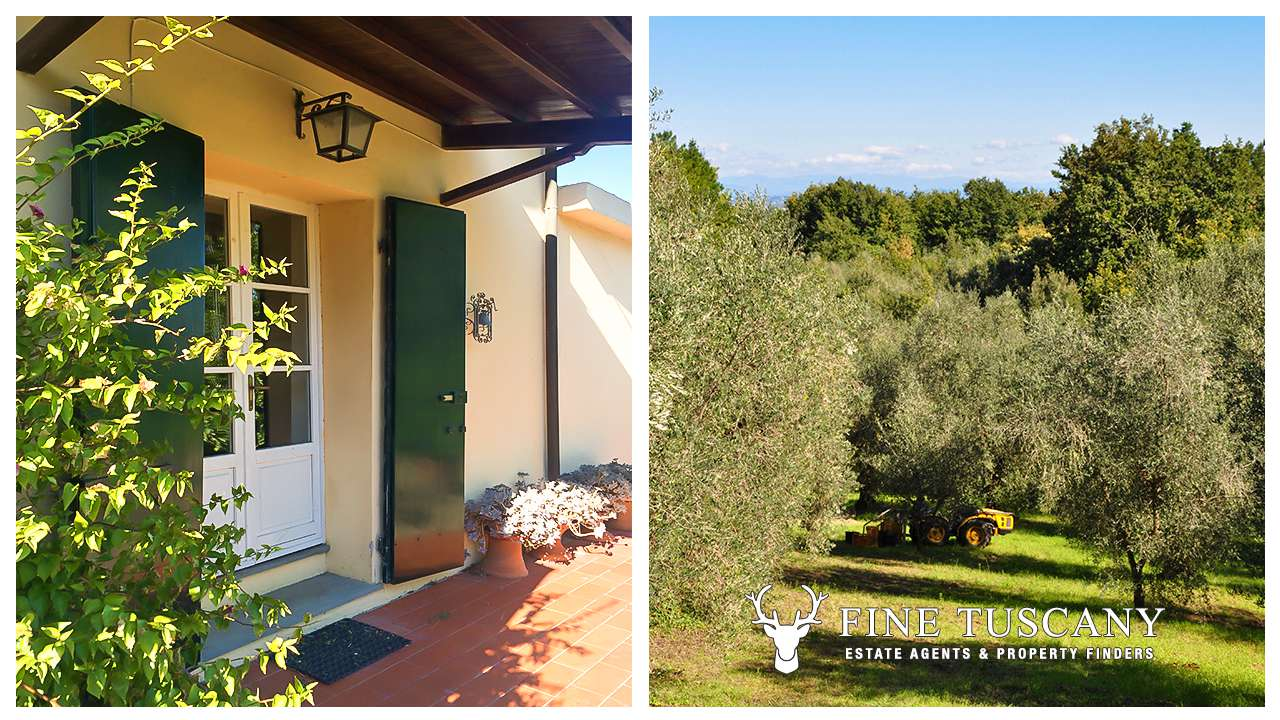 For sale 6 bed country house in in crespina tuscany italy for 1 homes in italy