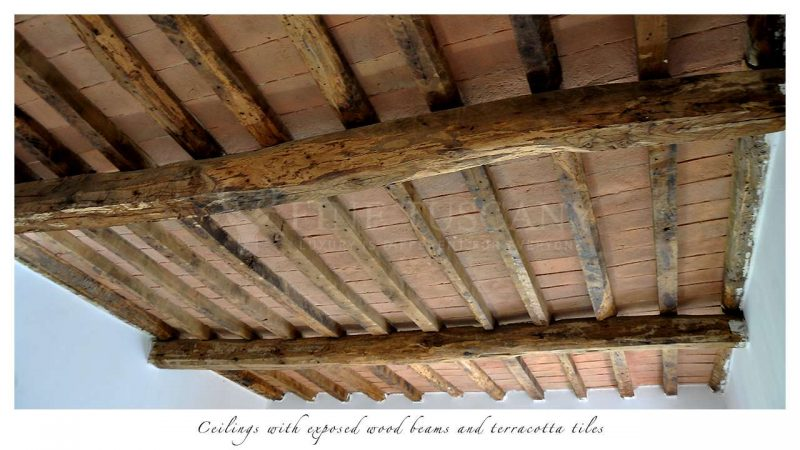 Apartment for sale in Carrara Tuscany Italy - Ceiling details