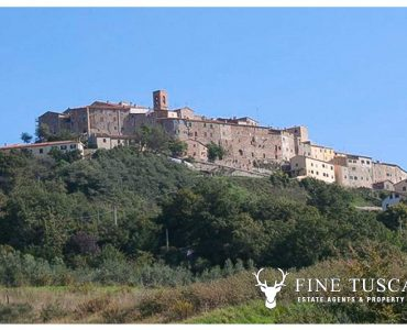Rustic Apartment for sale in Serrazzano Tuscany Italy