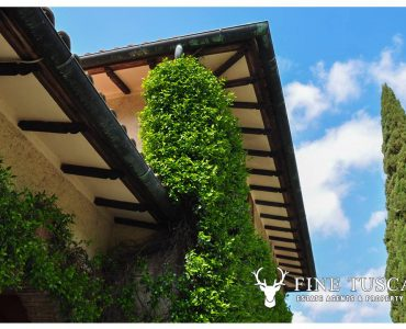 Villa for sale in Bientina, Tuscany, Italy - facade roof