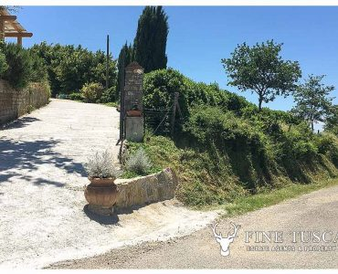 Rural Country House for sale in Sorano Grosseto Maremma Tuscany Italy