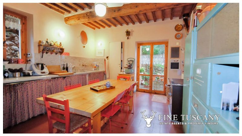 3 bedroom house with outbuilding and olive grove for sale in Calci Pisa Tuscany Italy